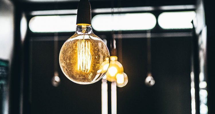 Bądź bio i eko w swoim domu. Jakie oświetlenie lubią domowe rośliny?